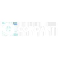 logo-Cordant Group-white